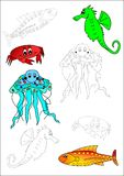 Coloring book-fish. Fish octopus star ocean color water vector illustration