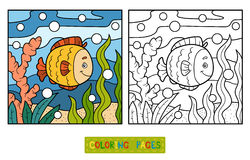 Coloring book (fish and background) Stock Photo