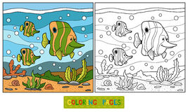 Coloring book (fish family) Stock Photo