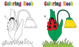 Coloring Book Flower Ladybug. Coloring book flower,ladybug,spring,nColoring and colored version included. Vector graphics Royalty Free Stock Photography