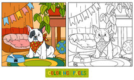 Coloring book (french bulldog and background) Royalty Free Stock Images