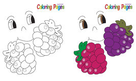 Coloring Book Fruit Berries. Coloring book  Fruit Berries Coloring and colored version included. Vector graphics Stock Images
