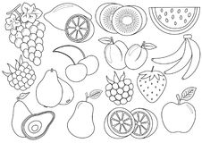 Coloring book. Fruits and berries cartoon. Icons. Vector. Illustration stock illustration