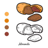 Coloring book: fruits and vegetables (almonds) Royalty Free Stock Photos