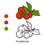 Coloring book: fruits and vegetables (cranberries) Stock Photos