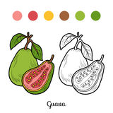 Coloring book: fruits and vegetables (guava) Stock Photo