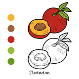 Coloring book: fruits and vegetables (nectarine) Royalty Free Stock Photo