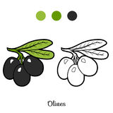 Coloring book: fruits and vegetables (olives) Royalty Free Stock Image
