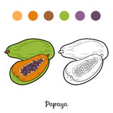 Coloring book: fruits and vegetables (papaya) Royalty Free Stock Photo