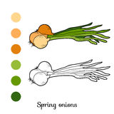 Coloring book: fruits and vegetables (spring onions) Stock Photography