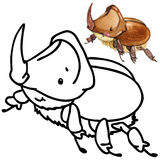 Coloring book funny Cartoon insect. Royalty Free Stock Image