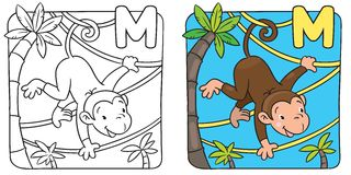 Coloring book of funny monkey on lians. Alphabet M. Coloring picture or coloring book of little funny monkey on lians near the palm. Alphabet M Royalty Free Stock Image