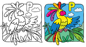 Coloring book of funny parrot. Alphabet P Stock Photography