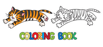 Coloring book of funny wild  tiger Royalty Free Stock Photos