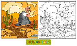 Coloring book Stock Images