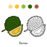 Coloring book game: fruits and vegetables (durian) Royalty Free Stock Photos
