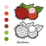 Coloring book game: fruits and vegetables (rambutan) Royalty Free Stock Images