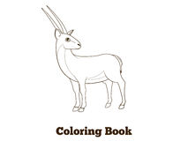 Coloring book gazelle african animal cartoon Stock Image