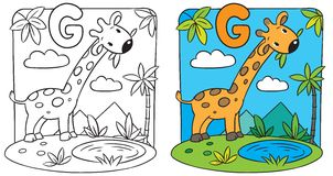 Coloring book of giraffe. Alphabet G Stock Images