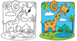 Coloring book of giraffe. Alphabet G Stock Images