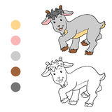 Coloring book (goat) Royalty Free Stock Image