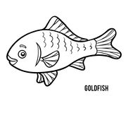Coloring book, Goldfish Stock Image