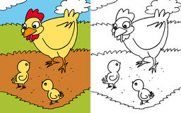Coloring book hen and chicks. Colors and black and white version of a yellow hen with her chicks for a coloring book Royalty Free Stock Image