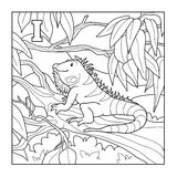 Coloring book (iguana), colorless illustration (letter I) Stock Photos