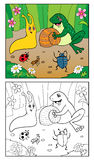 Coloring Book. Illustration of Snail, Insects and frog. Royalty Free Stock Photo