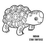 Coloring book, Indian star tortoise Royalty Free Stock Image