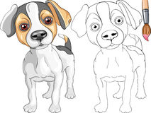 Coloring Book of Jack Russell Terrier Stock Images