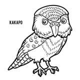 Coloring book, Kakapo vector illustration