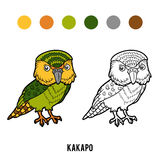 Coloring book, Kakapo parrot Royalty Free Stock Images
