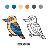 Coloring book, Kookaburra Royalty Free Stock Image