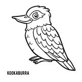 Coloring book, Kookaburra Stock Image