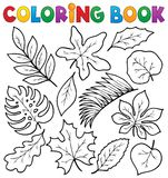 Coloring book leaves theme 1 Royalty Free Stock Images