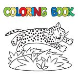 Coloring book of little cheetah or jaguar Royalty Free Stock Photo