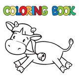 Coloring book of little funny cow or calf Stock Photos