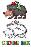 Coloring book of little funny hedgehog Stock Image