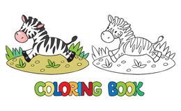 Coloring book of little zebra Royalty Free Stock Image