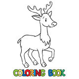 Coloring book of lttle funny young deer or fawn Royalty Free Stock Photos
