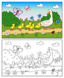 Coloring book. Mother duck and ducklings. Stock Images