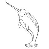 Coloring book (narwhal) Royalty Free Stock Images