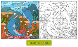 Coloring book (narwhal). Coloring book for children (narwhal Royalty Free Stock Photos