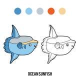 Coloring book, Ocean sunfish Royalty Free Stock Image