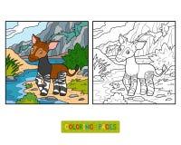 Coloring book, Okapi Stock Photo