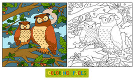 Coloring book (owl). Coloring book for children (owl vector illustration