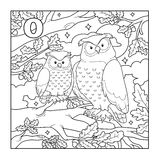 Coloring book (owl), colorless illustration (letter O) Stock Image