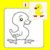 Coloring. Book or Page Cartoon Illustration of duckling for Children Stock Photo