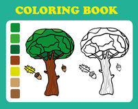 Coloring Book or Page Cartoon Illustration of oak Stock Images